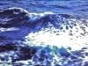 med-cruise-67_68-0360bcf-l