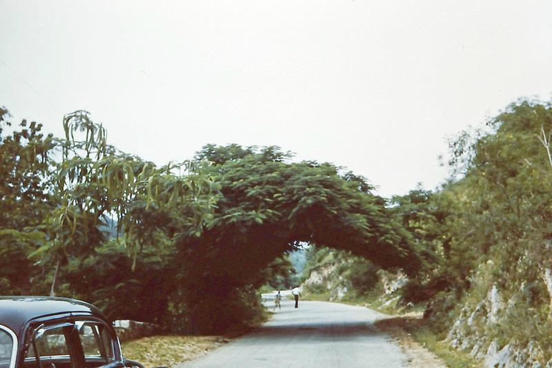 q-012 lover's lane