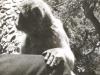 p-001-gibralter-rock-ape