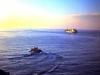 med-cruise-67_68-0123793-l