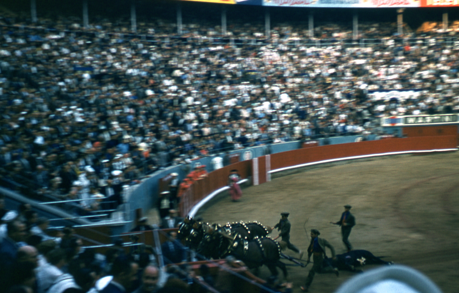 29-jun60-barcelona-bullfights