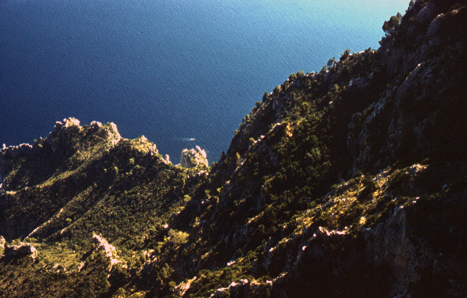 117-aug61-cannesnice-capri